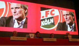 1. FC Köln (Foto)