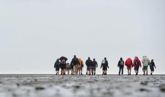 1500 Nordländer werben für Öko-Reisen ins Wattenmeer (Foto)