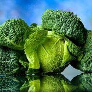 Als echtes Wintergemüse liefert Grünkohl jede Menge Eisen, Eiweiß und Calcium.