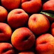 Mit nur zehn Milligramm pro 100 Gramm ist der Pfirsich zwar noch keine Vitamin-C-Bombe, aber 100 Gramm decken immerhin 13 Prozent des täglichen Bedarfs.
