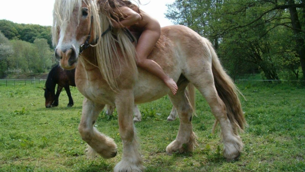 Pferd nackt reiten Reiten, Pferde,
