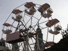 Riesenradschuberts (Foto)