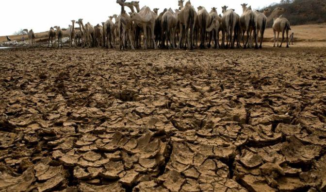 Kenia: Kein Wasser an der Wasserstelle (Foto)