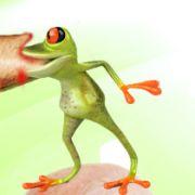 Sagt der Arzt: Beißt ihr Frosch? Sagt der Mann: Nee, mein Frosch beißt nicht. Da beißt der Frosch dem Arzt den Arm ab. Arzt: Ich denke ihr Frosch beißt nicht? Sagt der Mann: Ist ja nicht mein Frosch.