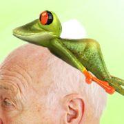 Sagt der Arzt: Was haben Sie denn da gemacht? Sagt der Mann: Ich brauche etwas Froschhaltefolie.
