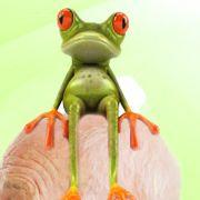 Sagt der Psychologe: Was haben Sie denn da gemacht? Sagt der Frosch: Was, Sie sehen mich auch?