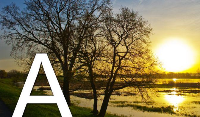 ... wie Anfang: Der Sommer 2010 beginnt bei uns meteorologisch am 1. Juni und astronomisch am 21. Juni (13.28 Uhr MESZ). Am 21. Juni ist die Sommersonnenwende: der Zeitpunkt, an dem die Sonne senkrecht über dem Wendekreis steht und die Tage am längsten si