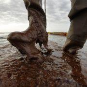 Dick im Öl-Schlick steht ein Mitarbeiter der Küstenwache in Plaquemines Parish, Louisiana.