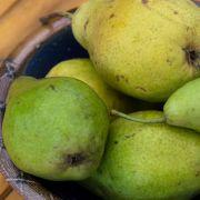 September: Birnen und Äpfel haben jetzt ihre eigentliche Hochsaison. Dazu gesellen sich Weintrauben, Holunder und Preiselbeeren, Quitten sind reif und die ersten Esskastanien.