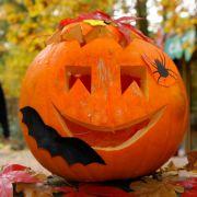 Oktober: Reif sind sie zwar schon ab September, aber ihren großen Auftritt haben Kürbisse natürlich erst an Halloween im Oktober. Das Obstangebot ist jetzt abgeflaut, dafür hängen Hasel- und Walnüsse essbar am Baum.