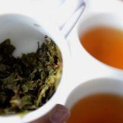 Hitzeerprobte Völker schwören auf heißen Tee.