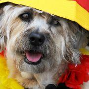 Von hinten, a tergo, doggy-style: Animalisch und auch ganz vorn auf der Beliebtheitsskala.