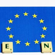 Die Agrarsubventionen der EU sind den Nichtregierungsorganisationen ein Dorn im Auge. Besonders die Exportsubventionen - mit deren Hilfe die europäischen Lebensmittel bis zu den Märkten in fernen afrikanischen Städten geschickt werden.