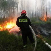 Auch Naturkatastrophen sind für steigende Preise verantwortlich. Durch die Brände in Russland und Überschwemmungen in Asien stiegen die Weizenpreise binnen eines Monats um das Doppelte.