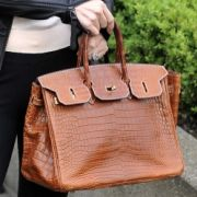 Wer schön und reich ist, kann seinen Schotter getrost in teure Taschen investieren - vor allem, wenn sie so schön auffällig sind wie die Birkin-Bag von Hermès.