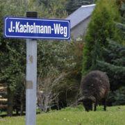 Kachelmann