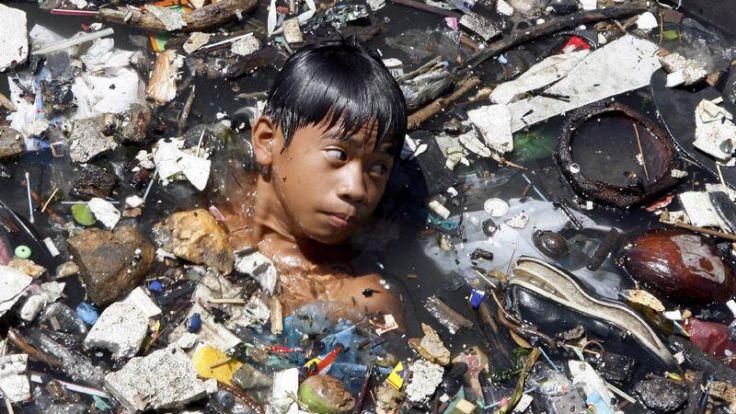 WWF: Gesundheitszustand der Erde alarmierend (Foto)