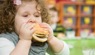 Kohlenhydrate (Foto)