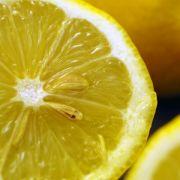 Bei Übelkeit in der Schwangerschaft empfiehlt sich neben Ingwer und Pfefferminze zudem eine Scheibe Zitrone zu lutschen.