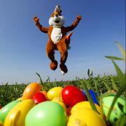 Ostern - das Fest der Fruchtbarkeit und Auferstehung. Nicht fehlen darf der Osterhase, der bringt schließlich die Eier. Außerdem stehen Osterfeuer, Feste und Märkte hoch im Kurs.