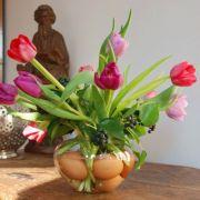 Eier eignen sich auch wunderbar zum Dekorieren. Legen Sie einfach bunte oder naturbelassene Eier in eine bauchige Vase und bestücken diese dann mit Pflanzen wie zum Beispiel Tulpen.