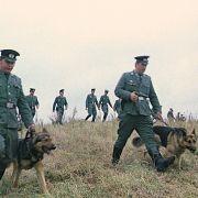 Im Film sucht eine Mannschaft der Volkspolizei nach dem vermissten Jungen.