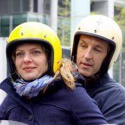 Im ARD-Film Ein guter Sommer spielt Andreas Schmidt einen einsamen Busfahrer, der sich in die Seelsorgerin Hanna (Jördis Triebel) verliebt.