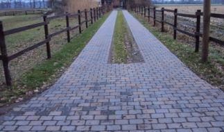 Gartenweg (Foto)
