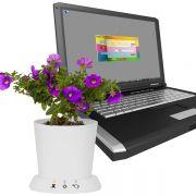 Für Hobbygärtner ohne grünen Daumen: Mit dem USB-Blumentopf gehören vor sich hin mickernde Büropflanzen der Vergangenheit an. Vorgestellt als Spielerei der Woche.
