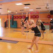 Neues Hobby: Die Katze lernt Poledance.