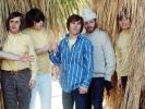 Beach Boys (Foto)
