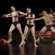 Tanzen gehen macht schlau! Das können alle Tanzmäuse, ganz egal, ob Disko- oder Tanzteegänger, jetzt als Ausrede anbringen.