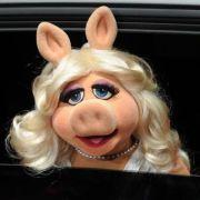 Überreicht bekam Hape seine Komiker-Kamera standesgemäß von Miss Piggy. Das Glamour-Schwein darf derzeit nicht fehlen, wenn irgendwo ein Roter Teppich liegt.