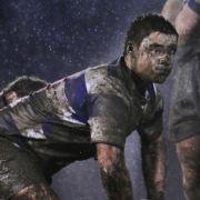Nein, kein Gemälde, sondern ein Foto des Sportfotografen Ray McManus. Auch der Ire gewann eine Sportauszeichnung mit seinem Bild vom Rugbymatch der Teams Old Belverder und Blackrock.