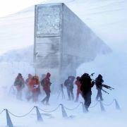 Die Arche Noah des Pflanzenlebens: Tief unter der Erde, auf der Insel Spitzbergen etwa 1000 Kilometer vom Nordpol entfernt, lagert ein Samentresor im ewigen Eis. Bis zu 4,5 Millionen Samenproben können hier gelagert werden.