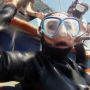 In einem Käfig geht Rebecca auf Tauchstation, um weiße Haie vor der südafrikanischen Küste zu beobachten. Ganz geheuer ist ihr das nicht.