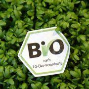 Lebensmittel fälschlich als Bioprodukte ausgewiesen.