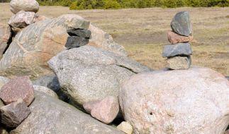 Steine sind für Teresa Widener leckere Eisenlieferanten. (Foto)