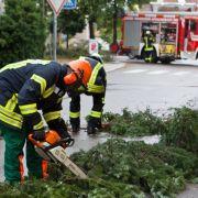 Feuerwehr zersaegt umgestuerzte Baeume auf einer Fahrbahn