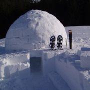 Auch für den Winter hat der Waldseilgarten ein absolutes Outdoor-Abenteuer im Programm: Beim Eskimo-Wochenende werden eigene Iglus gebaut, um anschließend darin zu übernachten. All Inklusive kostet der Spaß 210 Euro.