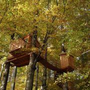Viel Holz und einen unverbauten Blick in die Natur gibt es auch im Baumhaushotel Solling im Herzen des Weserberglandes. Vier bis fünf Meter hängen die sieben Baumhäuser in der Höhe.