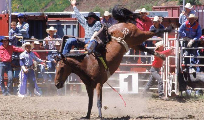 Im australischen Outback fehlen den Cowboys die Frauen, die sie mit ihren Rodeo-Künsten beeindrucken können.