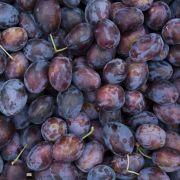 Pflaumen-Apfel-Konfitüre