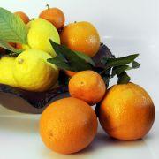 Orangen-Ingwer-Marmelade