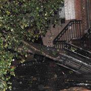 Kein Durchkommen mehr: Der Tropensturm entwurzelte vielerorts Bäume.