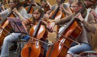 Wer vegan leben will, hat es bei Streichinstrumenten schwer. (Foto)