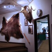 Die besten Bilder zu Eagle Plains Lodge: Das Rasthaus am Ende der Welt