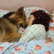 Rund ein Viertel der Deutschen lässt das Haustier im eigenen Bett schlafen. Aber gehören die Tiere da auch hin?