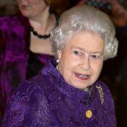 Es müssen nicht immer schrille Farben sein: Queen Elizabeth II. glänzt hier in einem Brokatmantel in einem dunklen Beerenton.