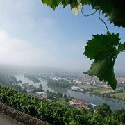 Zahlreiche Weinhänge gibt es am Ufer der Mosel zu betrachten.